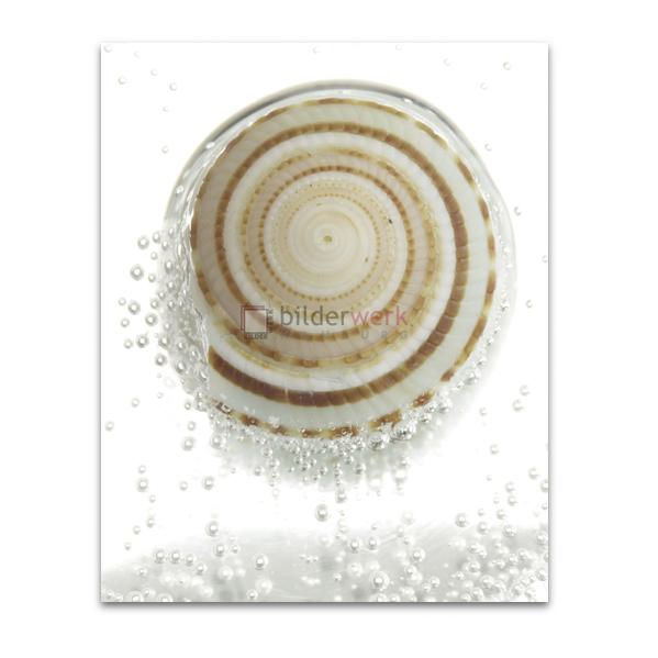 Spirale 06