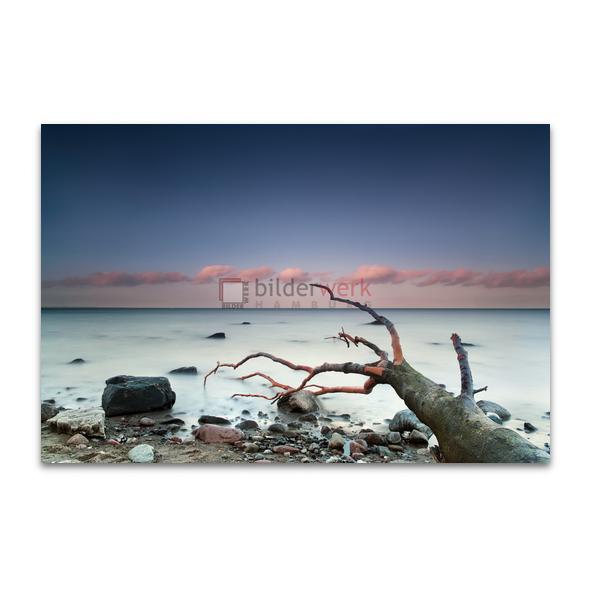 Nordische Küste 11