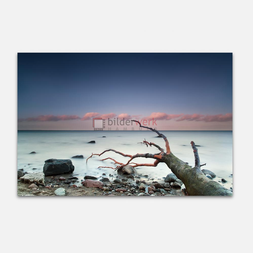 Nordische Küste 11 1