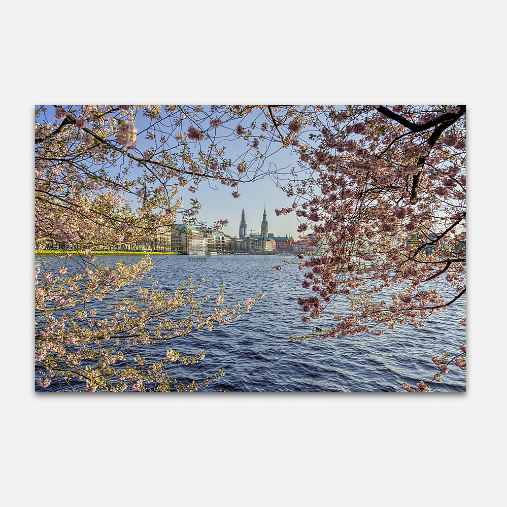 Hamburg – Alster 199