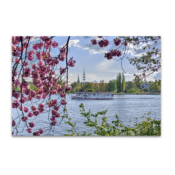 Hamburg - Alster 503