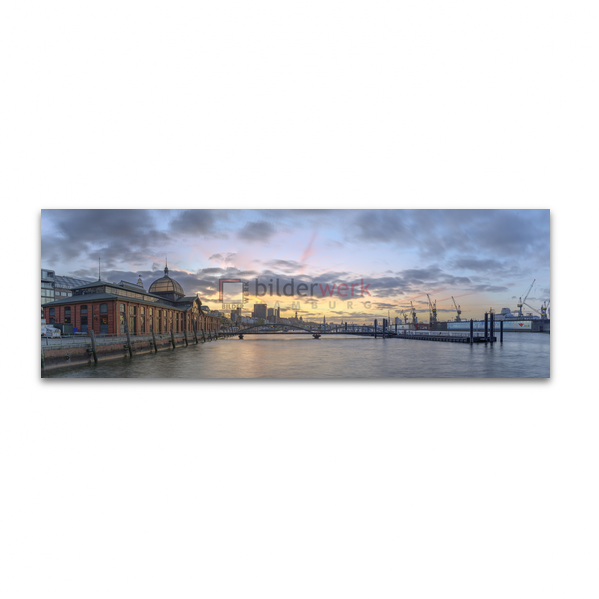 Hamburg Panorama 224