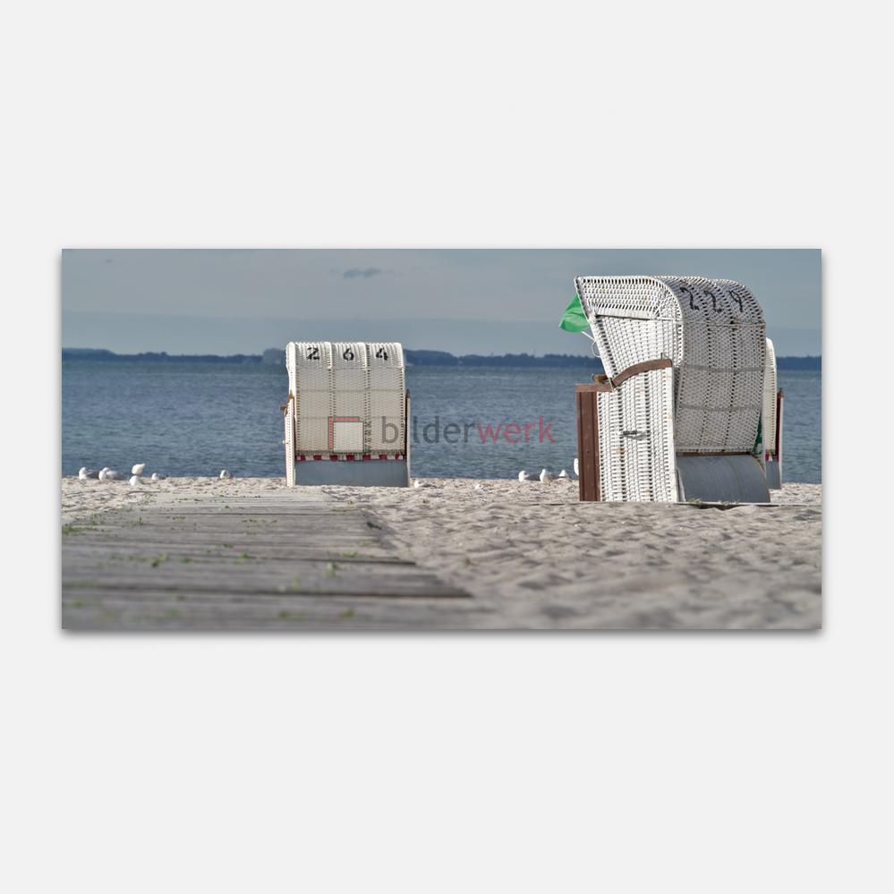 Strandkörbe mit Möwen 1
