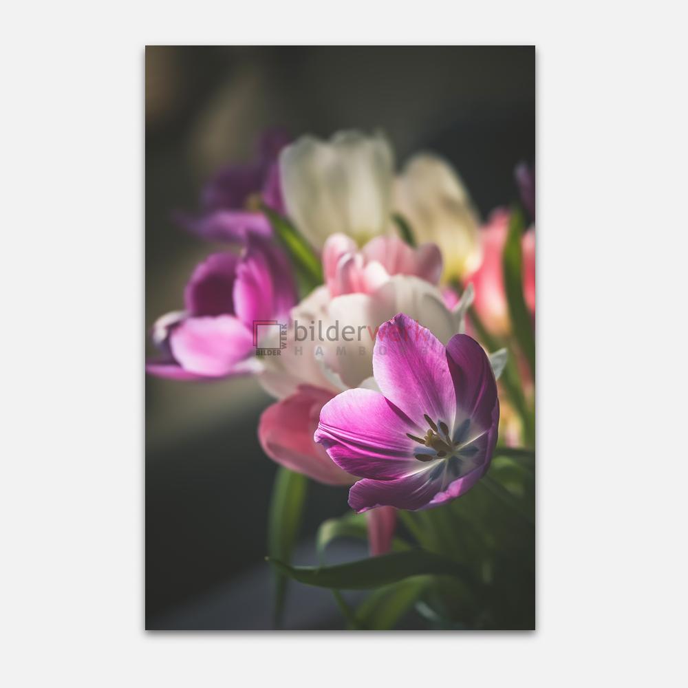 Botanisch 25 1