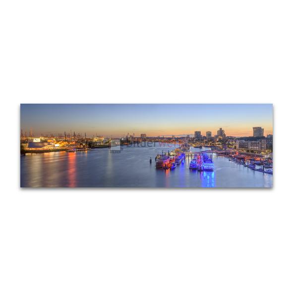 Hamburg Panorama 356